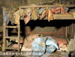 兰考:七个遇难孤儿失火现